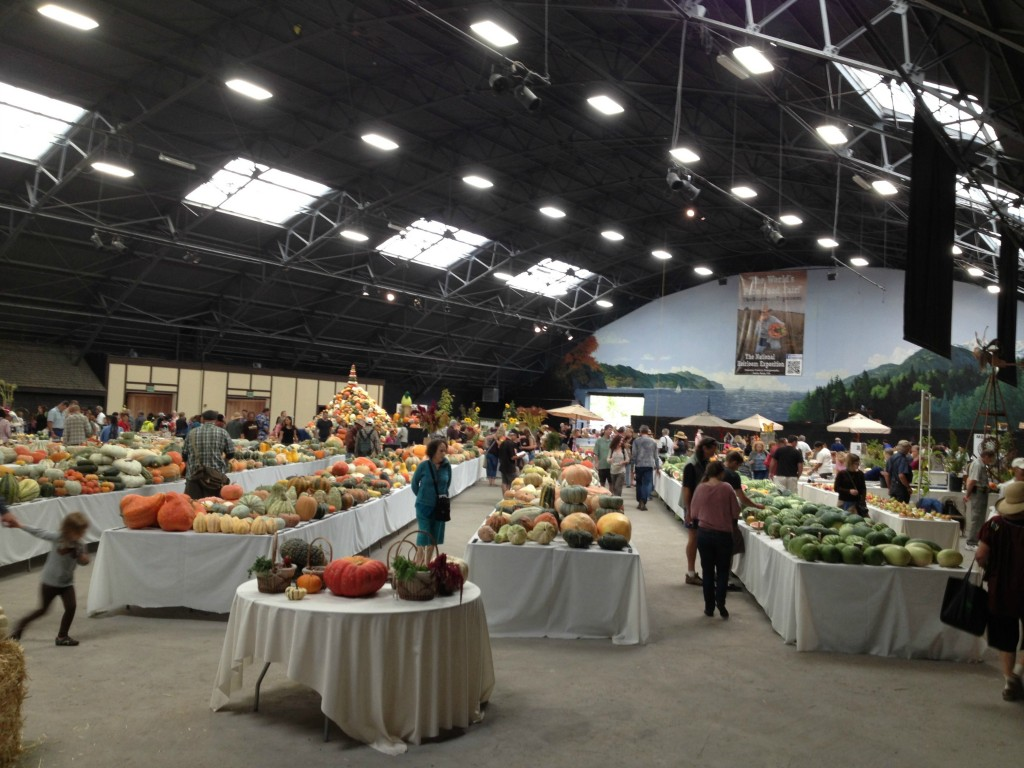 Main-Hall-Food-display-1024x768