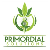 Primordial Solutions