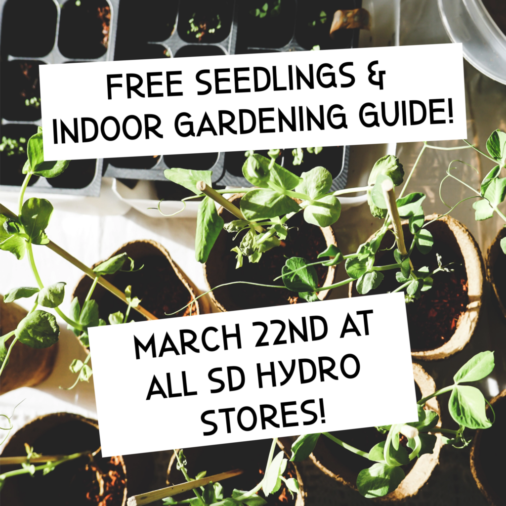 83bdd6f9b5ce2 We will be giving away assorted spring crop seedlings along with a copy of  the Indoor Gardening Guide to all customers on March 22nd!